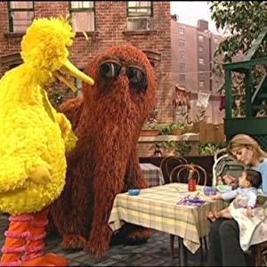 Big Bird, Oscar the Grouch, Oscar, Granny Bird, Bruno the Trashman, Bennett Snerf, Adrienne, Annoucer, Anything Muppets, Big Bird & Oscar...