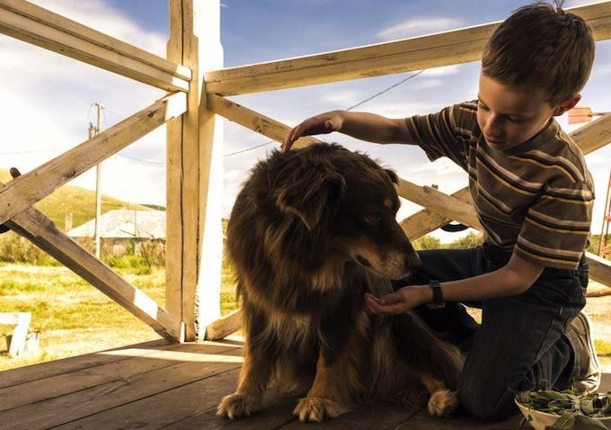 Tapioca the Dog