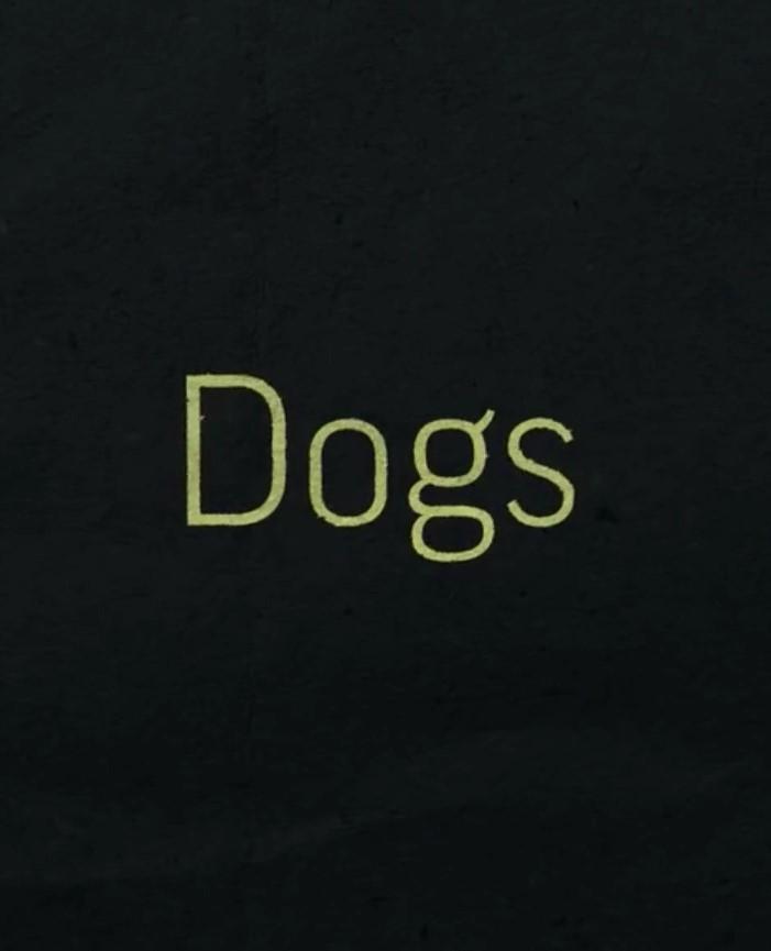 Dogs - Season 1
