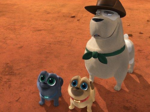 Puppy Dog Pals - Season 2