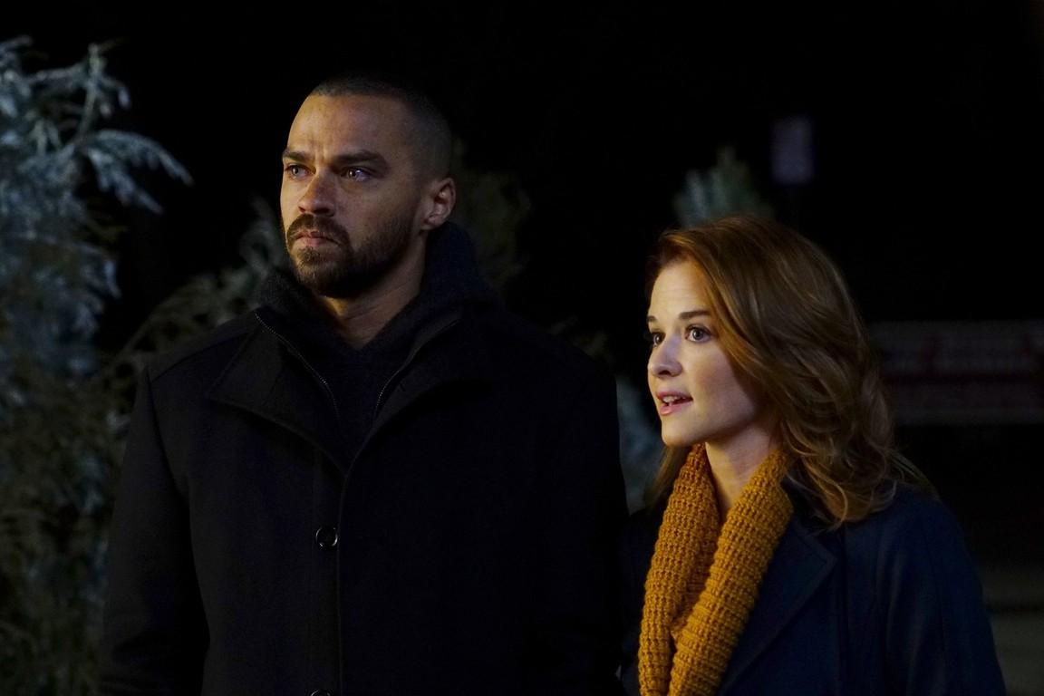 GreyS Anatomy Season 13 Episode 10 Watch Online